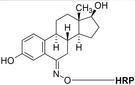 AAT Bioquest 雌二醇-HRP缀合物 50550