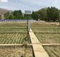 拉萨达孜县土壤温湿度盐分监测系统落成