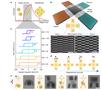 Nature:形状变形的纳米磁性编码微型机器人