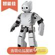 智能佳 DARwin-OP2(達爾文)動態人形智能機器人開源平台