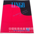 lingo 14.0软件代理