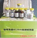 雷帕霉素靶蛋白(mTOR)ELISA试剂盒