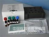 兔子免疫球蛋白M ELISA试剂盒