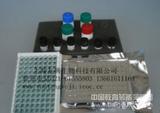 大鼠白介素17A(IL-17A)ELISA Kit