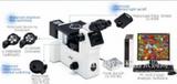 宁夏OLYMPUS GX71工业显微镜