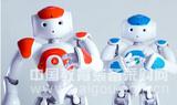 机器人NAO H25