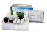 鹿黄嘌呤氧化酶(XOD)ELISA试剂盒