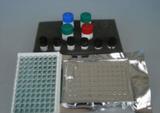 大鼠血小板活化因子(PAF)ELISA试剂盒