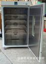 【DHG-9625A】 厂家直销 立式干燥箱物廉价美
