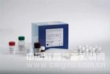 仓鼠白介素3(IL-3)ELISA试剂盒厂家直销