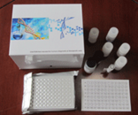 OPGL试剂盒,人骨保护素配体ELISA试剂盒