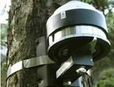 DRL26树木生长测量仪