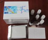 BMPs试剂盒,人骨形成蛋白ELISA试剂盒价格