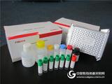 硝基咪唑类检测试剂盒