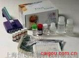 豚鼠免疫球蛋白A ELISA试剂盒