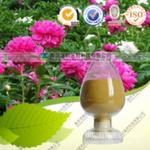 芍药苷CAS号:23180-57-6优质植物提取,厂家特价供应