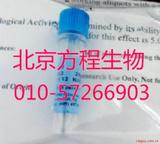 北京厂家细胞因子 Recombinant Human EGF的最低价格 货号AF-的最低价格 货号100-15
