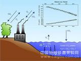 Oxzala差分式O2/CO2分析系統