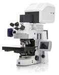 蔡司LSM800共聚焦显微镜