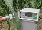 植物呼吸二氧化碳测定仪