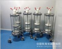 北京百瑞濤供應實驗室實驗室玻璃塑料柱 實驗室玻璃不銹鋼柱 實驗室不銹鋼柱