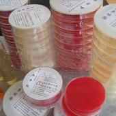 弧菌科细菌生化培养基
