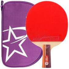 红双喜【DHS】2星双面反胶乒乓球直拍 弧圈结合快攻乒乓球拍 R2006 单只拍