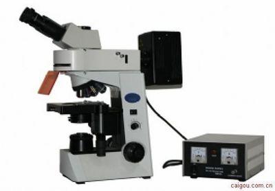 广东荧光显微镜MF41