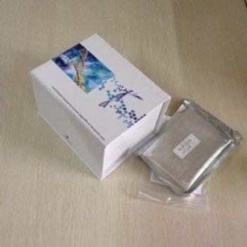 人肺表面活性物质相关蛋白A(SP-A)ELISA试剂盒