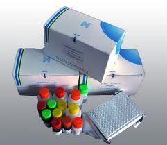小鼠趋化因子试剂盒