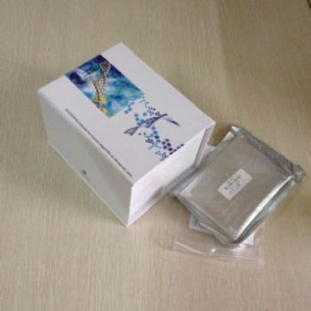 人毒蕈碱型乙酰胆碱受体(M-AChR)ELISA试剂盒