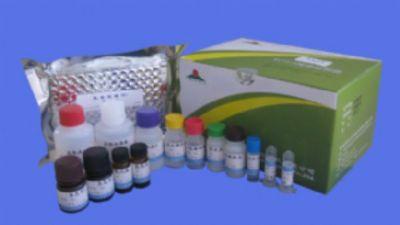 小鼠磷酸化蛋白激酶C试剂盒