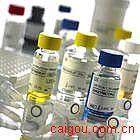双花扁豆凝集素(DBA) ELISA试剂盒