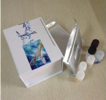 猪血小板活化因子(PAF)  ELISA试剂盒
