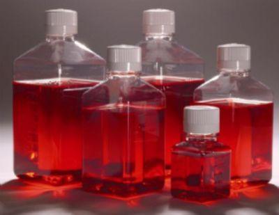 结晶紫中性红胆盐-4-甲基伞形酮-β -D-葡萄 糖苷琼脂(VRBA-MUG)