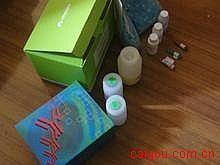 人血小板活化因子(PAF)ELISA试剂盒