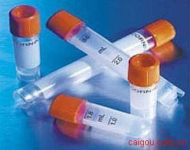 HelicobacterPylori