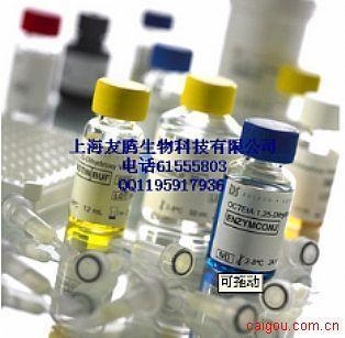 大鼠免疫球蛋白G1(IgG1)ELISA试剂盒