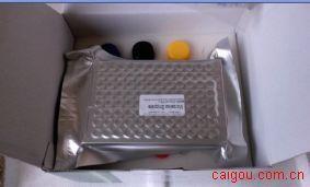 小鼠c-fos ELISA Kit  # Mouse c-fos ELISA Kit