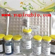 人血管紧张素1-7(Ang 1-7)ELISA试剂盒