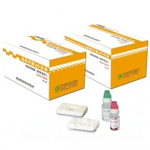 小鼠β-防御素(β-DF)ELISA试剂盒