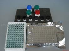 兔Bcl-2相关X蛋白(BAX)ELISA试剂盒说明书