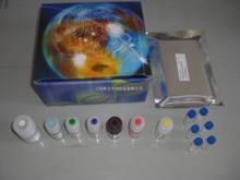 大鼠颗粒酶B(Gzms-B)ELISA试剂盒说明书