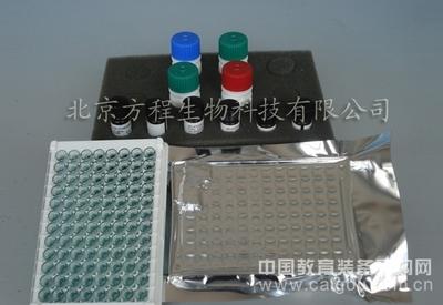 进口人胆碱乙酰化酶 ELISA代测/人CHAc ELISA试剂盒价格