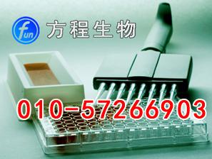 小鼠水通道蛋白3(AQP-3)代测/ELISA Kit试剂盒/说明书