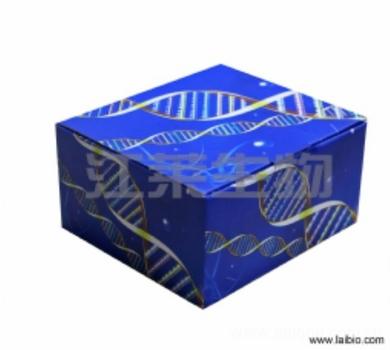 人溴脱氧核苷尿嘧啶(BrdU)ELISA试剂盒说明书