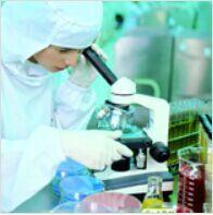 进口标准品格隆溴铵杂质I