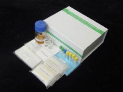 人Bcl-2相关X蛋白(BAX)ELISA试剂盒