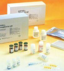 犬促卵泡素检测复孔(FSH)ELISA试剂盒最便宜价