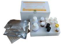 兔子肠脂肪酸结合蛋白(iFABP)ELISA试剂盒